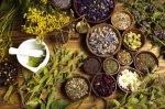 რატომ იზრდება მოთხოვნა ნატურალურ, მცენარეულ მედიკამენტებზე?!